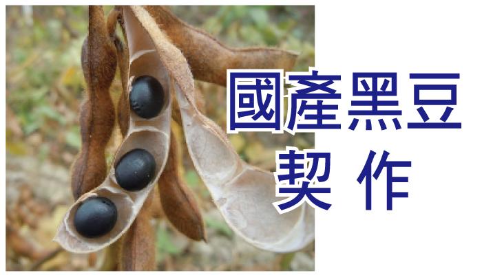 契作國產黑豆 新鮮在地好風味